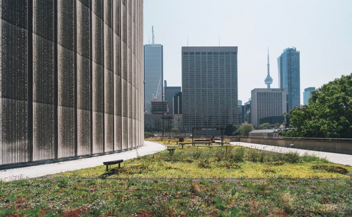 Net Positive Buildings and Developments
